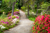 Middleton Place is a National Historic Landmark and home to America's Oldest Landscaped Gardens.