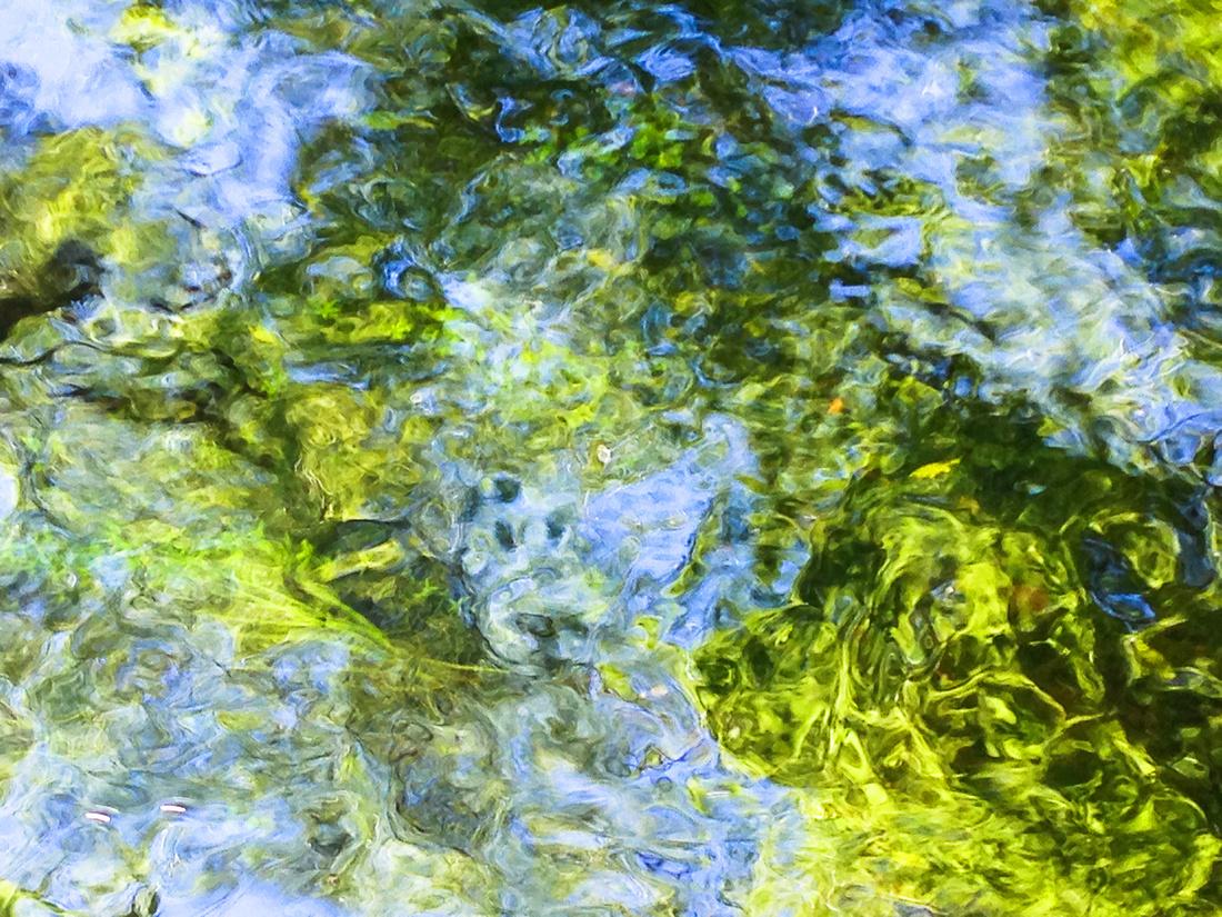 IMG_3551Underwater12x9