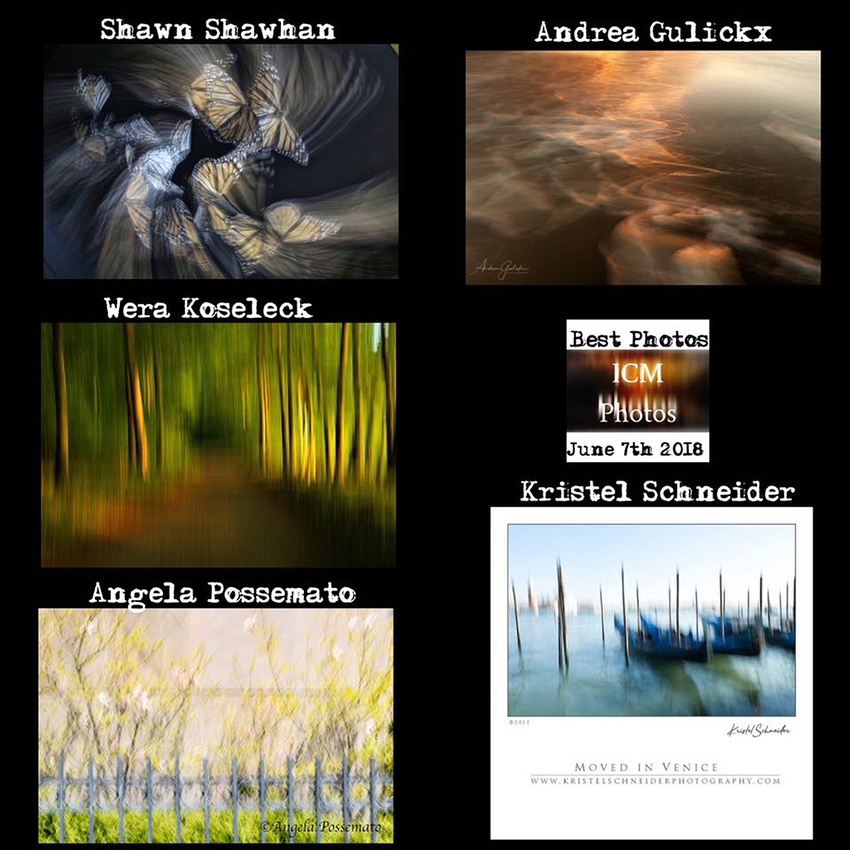 Photo of the Day - Intentional Camera Movement Facebook page