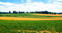 Monroe County Fields