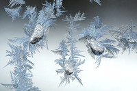 Ice Drops and Frost Feathers-4