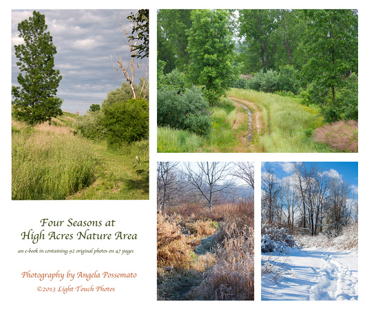 nature for all seasons download