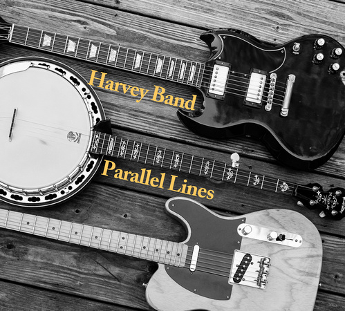 Parallel Lines Front Cover