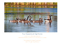 "Order yours soon. Only a few copies left! ""Celebrating Four Seasons at High Acres"""